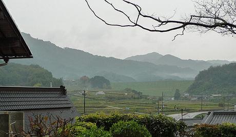 石位寺-忍阪550.jpg